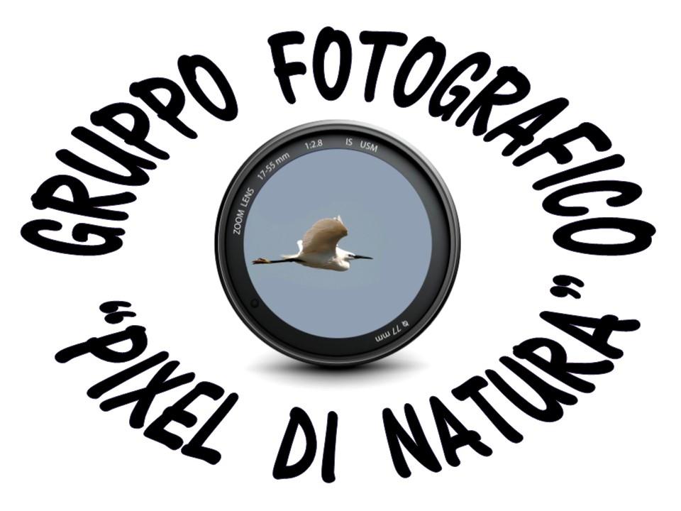 Pixel di Natura